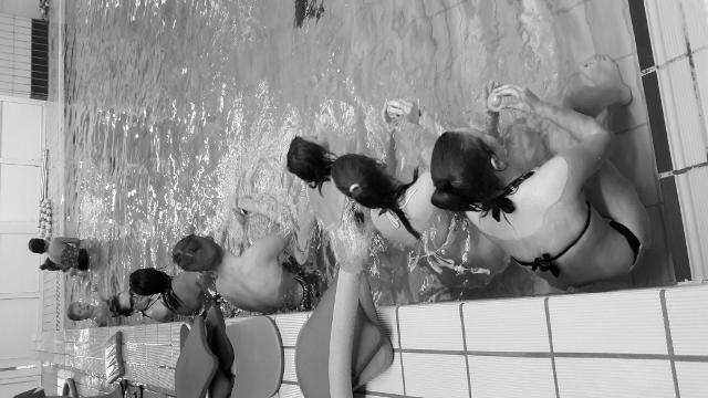 Plavalni tečaj 2017-2018